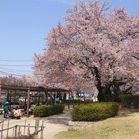 Photo taken at 南部公園 by Takman on 4/14/2013