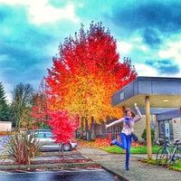 Photo taken at Northwest University by Robert V. on 11/14/2013