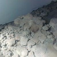 Photo taken at Giacimento preistorico di Rebibbia (museo) by Omar K. on 5/18/2014
