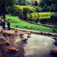 Photo taken at Парк «Дубки» by Daria B. on 9/28/2012
