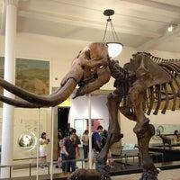 Foto tirada no(a) Museu Americano de História Natural por Emiko T. em 7/27/2013