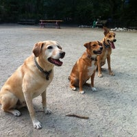 Photo taken at Tompkins Square Park Dog Run by Michael W. on 7/15/2011