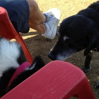 Photo taken at Desert Vista Dog Park by Tracy O. on 2/18/2013