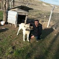 Photo taken at pursaklar kavacık su aile ve sosyal politikalar bakanlığı dosim by Mustafa Ş. on 3/16/2015