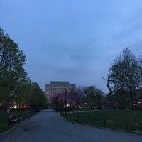 Das Foto wurde bei Joyce Kilmer Park von Stephanie am 4/20/2017 aufgenommen