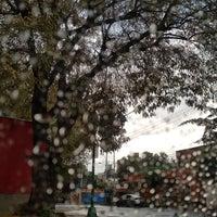 Foto tomada en Coyoacán por Carolina C. el 8/15/2017