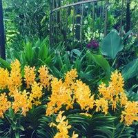 Das Foto wurde bei National Orchid Garden von pooneh T. am 3/30/2017 aufgenommen