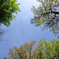 Photo taken at South Park Blocks by Douglass R. on 4/21/2014