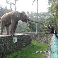 Photo taken at Kebun Binatang Ragunan by Tirta L. on 5/10/2013