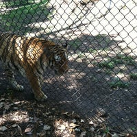 Photo taken at Great Plains Zoo by Susan B. on 8/9/2013