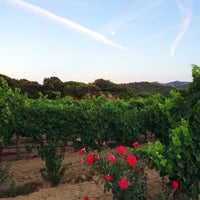 Photo taken at Agriturismo Il Vermentino by Dario M. on 8/8/2014