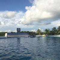 Photo taken at Dolphin Maroma By Dolphin Discovery by Anali on 10/30/2015