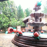 Photo taken at Genting Strawberry Leisure Farm by Sr S. on 9/17/2017