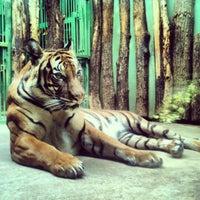 Photo taken at Prague Zoo by Maria M. on 3/7/2013