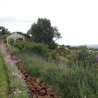 Photo taken at Lavender Farm by Nancy J. on 4/10/2014