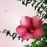 Photo taken at Hanging Gardens by Kaushik P. on 7/7/2013