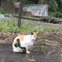 Photo taken at 松田川ダム by 枇杷ちゃん on 10/6/2017