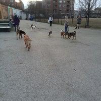 Photo taken at Churchill Field Dog Park by Alan G. on 4/5/2013