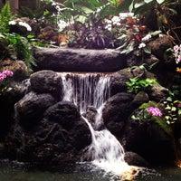Photo taken at Disney's Polynesian Village Resort by C on 5/4/2013