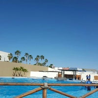 Photo taken at Cabo Dolphins by America P. on 1/27/2016