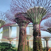 Photo taken at Gardens by the Bay by R.C. R. on 6/7/2013