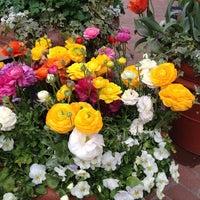 Photo taken at Rose Terrace Café by April W. on 5/11/2014