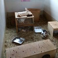 Photo taken at Children's Farm by myuka . on 6/3/2017