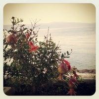 9/28/2012 tarihinde Mustafa Ozan A.ziyaretçi tarafından İncir Cafe'de çekilen fotoğraf