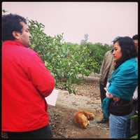 Photo taken at Agropecuaria Santa Polonia by Mingo G. on 9/6/2013