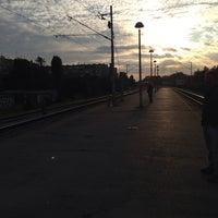 Photo taken at Borongaj by Andrija L. on 10/1/2013