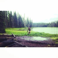 Photo taken at Willamette National Forest by Elena C. on 8/15/2014