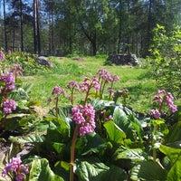 Photo taken at Rauhamesta by Eija M. on 5/30/2013
