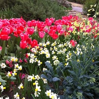 Photo taken at The Dixon Gallery and Gardens by Sarah N. on 4/7/2013