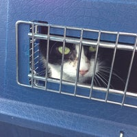 Photo taken at North Windham Veterinary Hospital by beckie l. on 10/8/2012