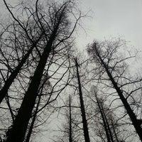 Photo taken at Impression West Lake by Yuan M. on 12/15/2012