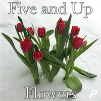 Photo taken at Five and Up Flowers by Floral S. on 3/21/2015