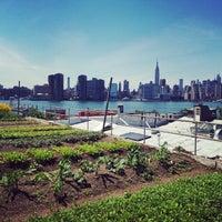 Photo prise au Eagle Street Rooftop Farms par Cédric P. le6/13/2014
