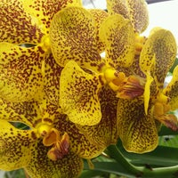 Photo taken at Orchid Farm by Robert T. on 2/1/2017