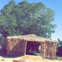 Photo taken at مزرعة الشيخ محمد بن الأمير by Manal A. on 2/19/2016