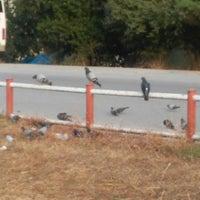 Photo taken at Derebahce Yürüyüş Yolu by Ayşe T. on 9/12/2017
