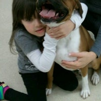 Photo taken at Petco by Beverly C. on 11/16/2012