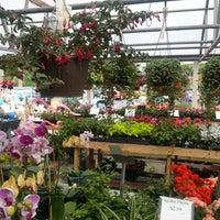 Photo taken at Dolin's Garden Center by Paulette G. on 4/14/2013