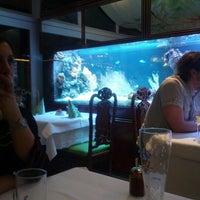 1/4/2013에 Omid S.님이 China-Restaurant Tang에서 찍은 사진