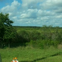 Photo taken at Paynes Prairie Preserve State Park by Starr V. on 9/17/2012