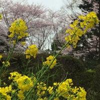 Photo taken at Tsukayama Park by たけ11 on 4/3/2016