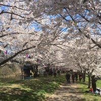Photo taken at 福岡堰さくら公園 by nabe.m on 3/30/2018