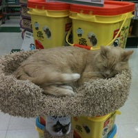 Photo taken at Pet Supplies Plus by Adrienne H. on 5/3/2013