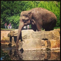 Photo prise au Tierpark Berlin par Luci W. le6/6/2013