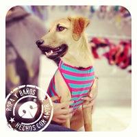 Photo taken at Wawaw, ropa para perros by Wawaw R. on 6/1/2013