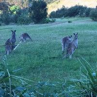 Photo taken at Cardinia Reservoir Park by Khozeima F. on 11/21/2016
